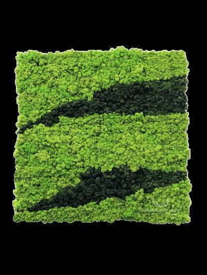 mech-chrobotek-panel-mieszany