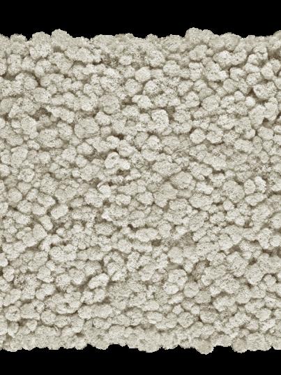 chrobotek-finski-bialy-white_800x800-przezroczysty