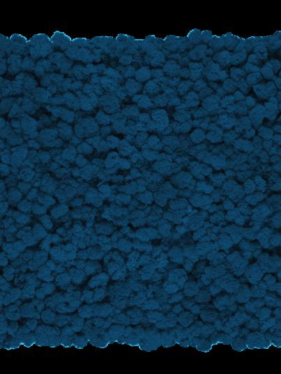 chrobotek-finski-ciemny-niebieski-dark-blue_800x800-przezroczysty
