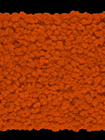 chrobotek-finski-pomaranczowy-orange_800x800-przezroczysty-600x600