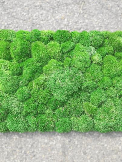 panel-z-mchem-poduszkowym-srednim-poduszka-sredniozielona-100x50cm-100cm-100-kulisty-sredniozielony-medium-green